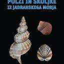 Polži in školjke iz Jadranskega morja