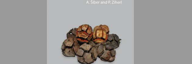 Nova knjiga dr. Antonia Šibra in prof. dr. Primoža Ziherla