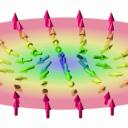 Frustrirana tekoče kristalna urejenost kot ključ do topološke mehke snovi