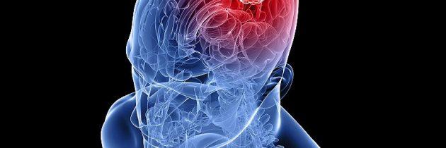 Mednarodno srečanje na temo vpliva neonizirnih sevanj na zdravje