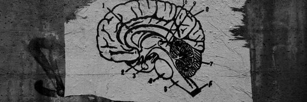 """""""Mentalno zdravje"""" in družbeni problemi v zgodovinski perspektivi"""