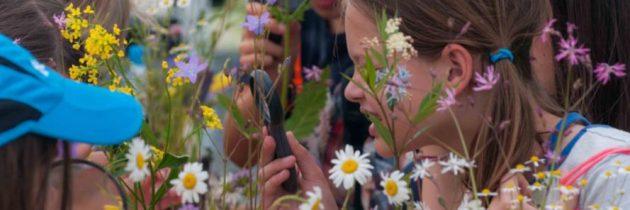 Dan očarljivih rastlin 2019