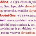 Slovenščina med globalizacijo in konzervacijo