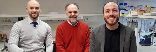 Kemijski inštitut pridobil nov projekt Evropskega raziskovalnega sveta za izboljšavo metode urejanja genomov