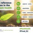 Mednarodno leto zdravja rastlin  in delovanje prvih EU referenčnih laboratorijev, tudi na NIB