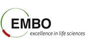 Prof. dr. Gregor Anderluh odslej član ugledne mednarodne znanstvene organizacije EMBO