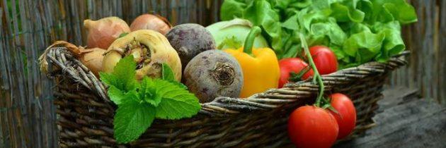 Kako učinkovita je lahko trajnostna preskrba s hrano in kako uspešno jo uvajamo?