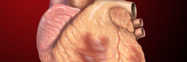 Preboj na področju zdravljenja srčnega popuščanja