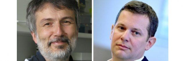 Raziskovalci Instituta Jožef Stefan z uspešnimi znanstvenimi objavami