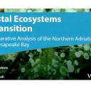 Obalni ekosistemi na prehodu